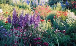 Zazieleni się… Żorzanie budują ogrody społeczne