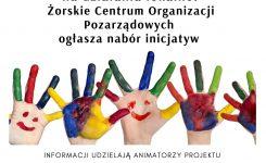 Wyniki naboru inicjatyw na działania lokalne !
